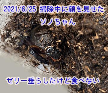 IMG_9982.JPG